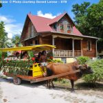 Ox Cart Old House