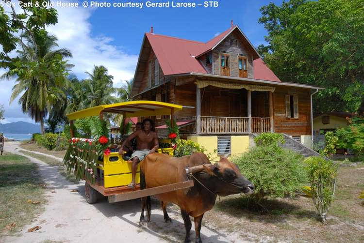5 Ox Cart & Old House