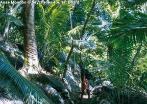 Anse Mondon © Seychelles Tourist Board