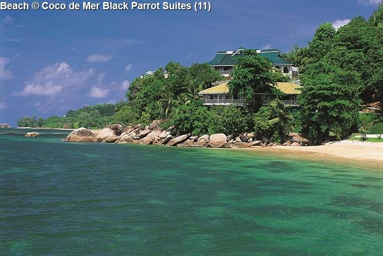Beach © Coco De Mer Black Parrot Suites (11)