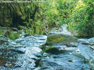 Cassedent © Seychelles Tourist Board