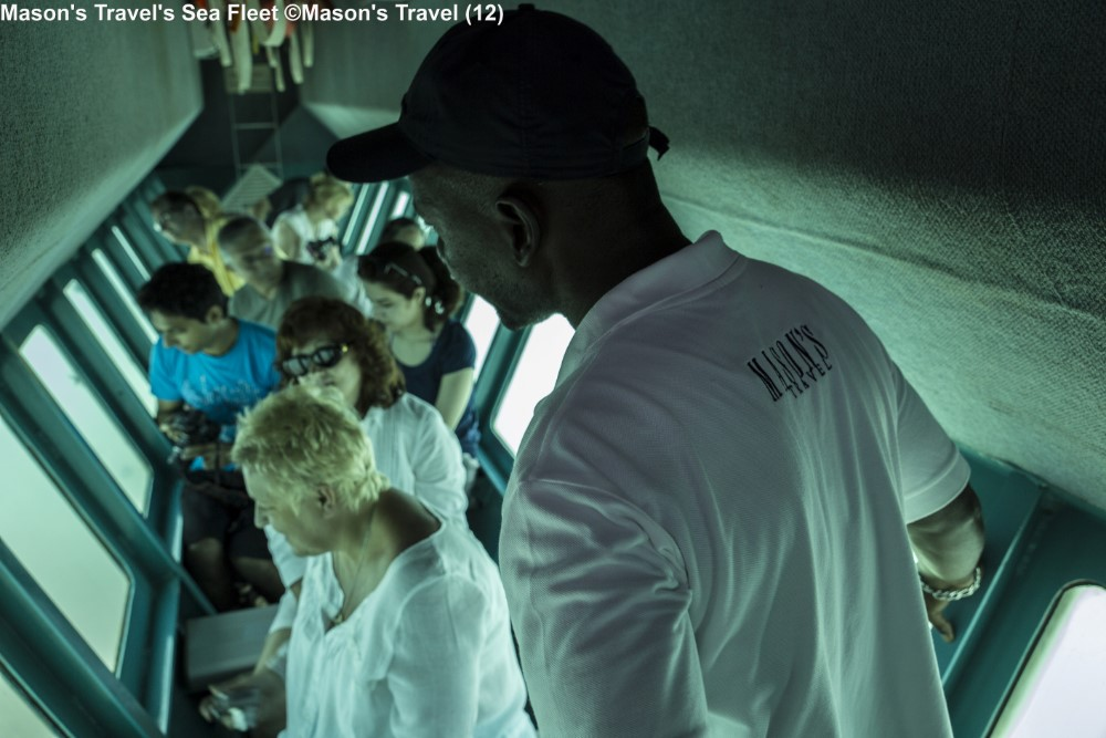 Watching the under sea world Masons Travel