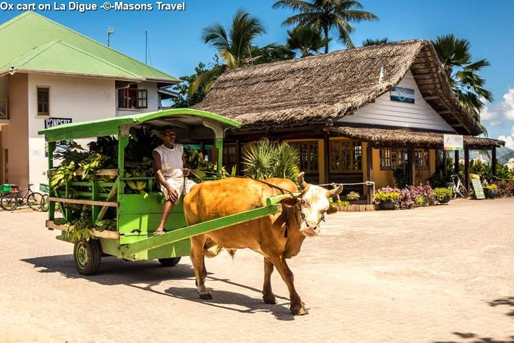 Ox cart on La Digue