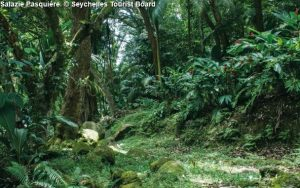 alazie Pasquière © Seychelles Tourist Board