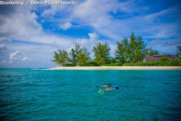 Snorkeling Denis Private Island