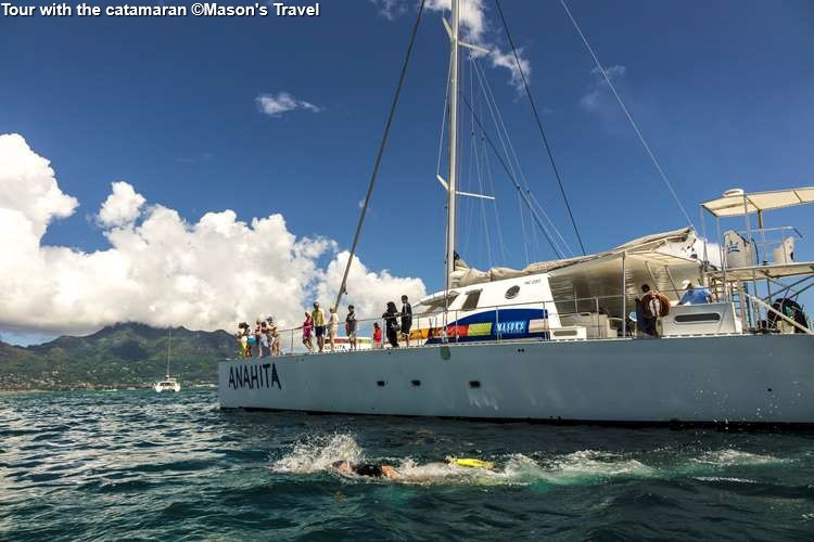 Tour with the catamaran