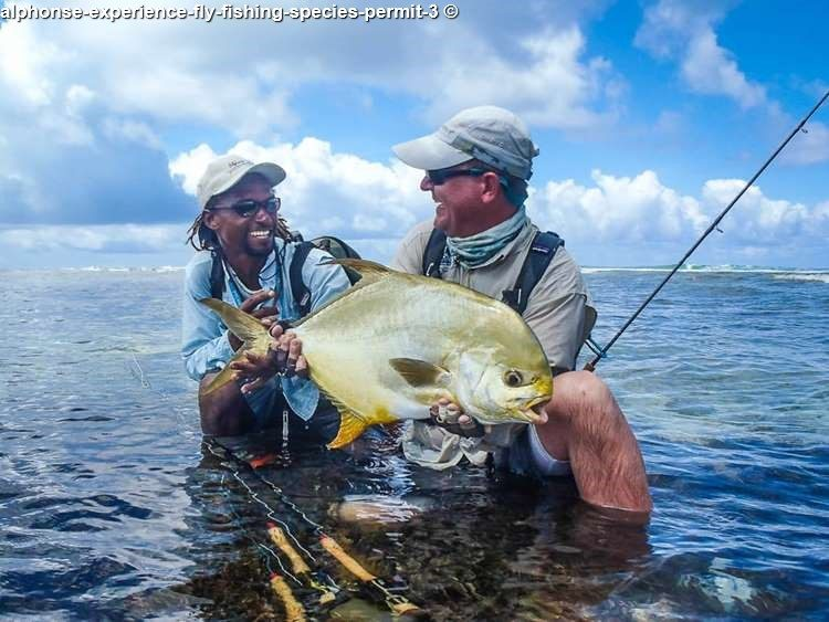alphonse experience fly fishing species permit