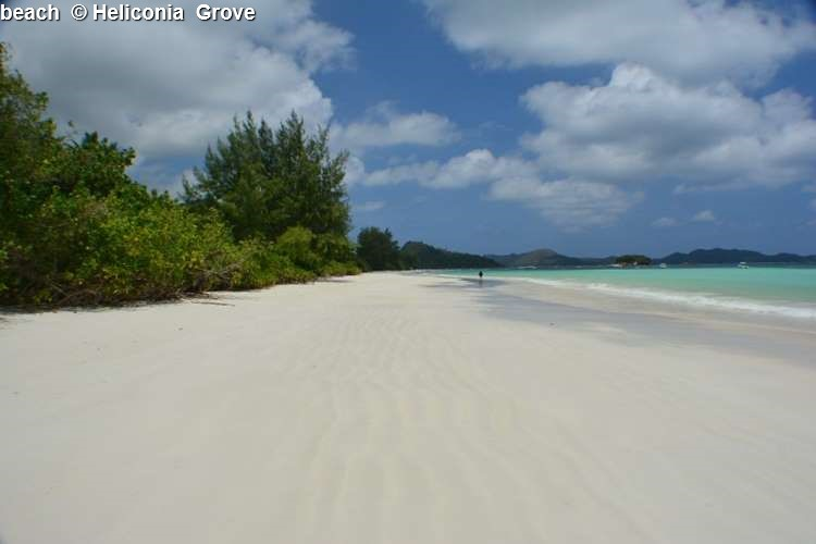 Beach © Heliconia Grove