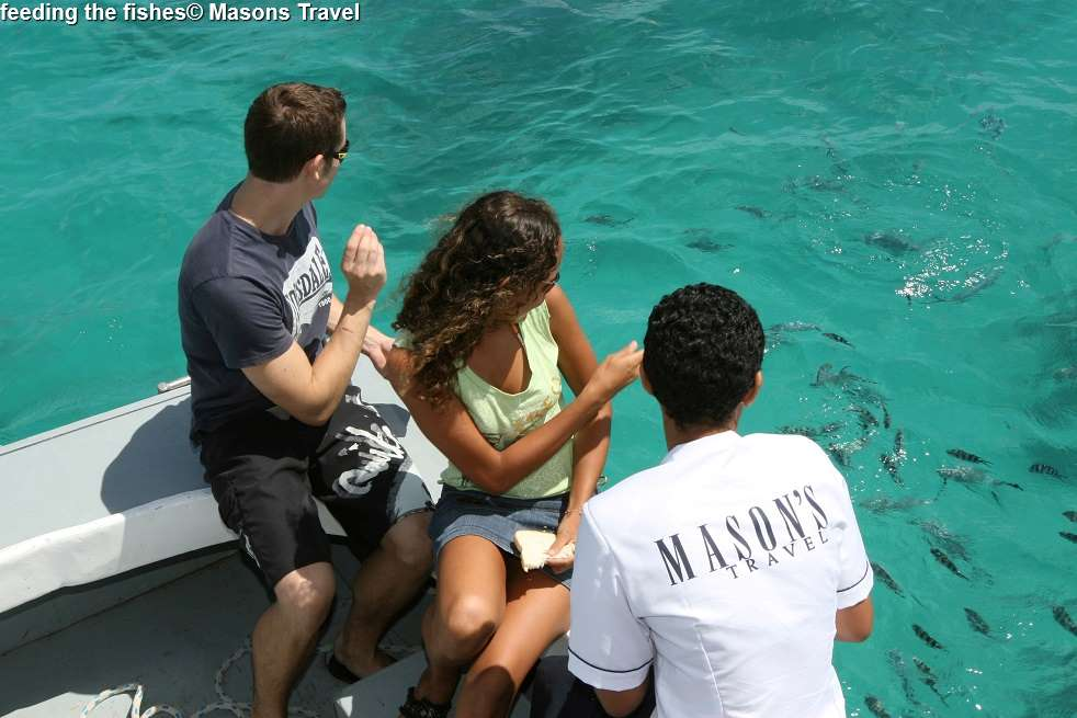 Feeding the fishes © Masons Travel