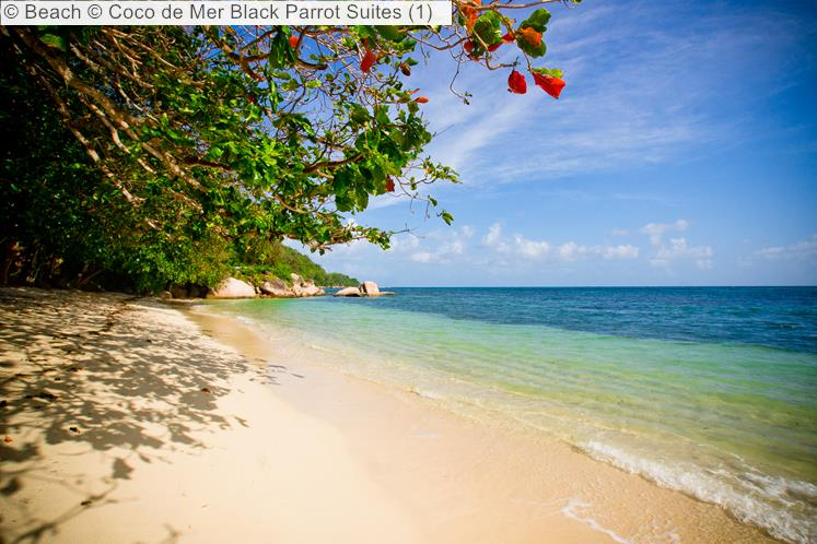 Beach © Coco De Mer Black Parrot Suites