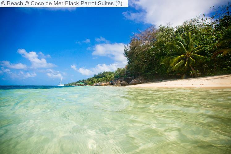 Beach Coco de Mer Black Parrot Suites