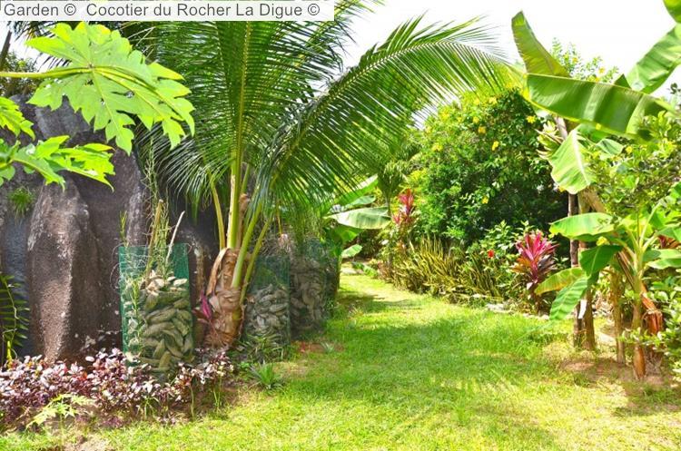Garden © Cocotier Du Rocher La Digue ©