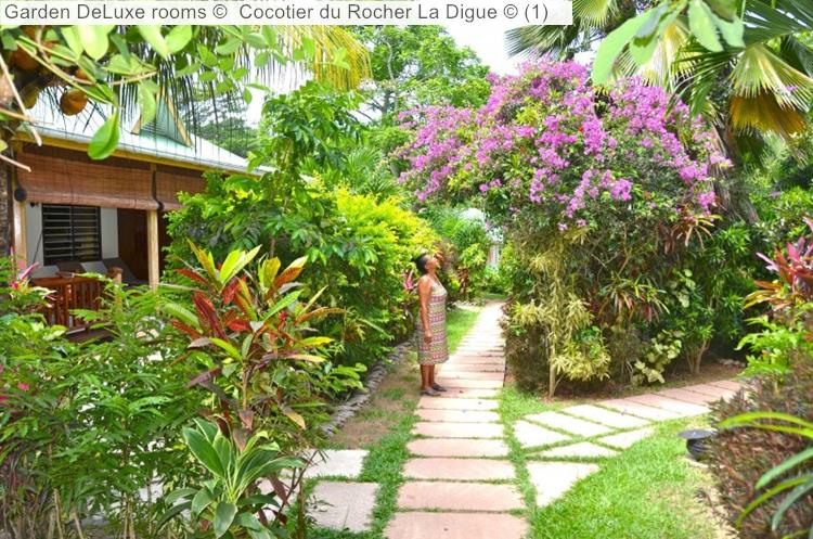 Garden DeLuxe Rooms © Cocotier Du Rocher La Digue ©