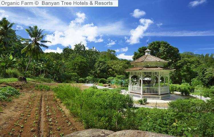 Organic Farm Banyan Tree Hotels Resorts Seychelles