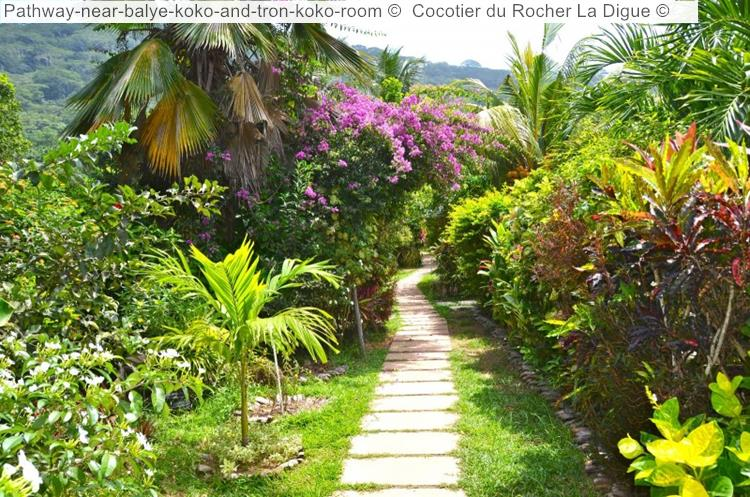 Pathway Near Balye Koko And Tron Koko Room © Cocotier Du Rocher La Digue ©