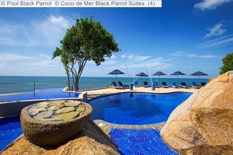 Pool Black Parrot © Coco De Mer Black Parrot Suites