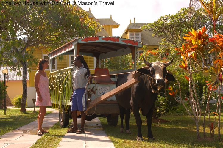 Yellow House With Ox Cart © Mason's Travel