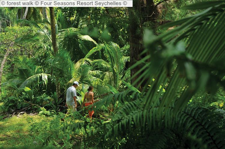 Forest Walk © Four Seasons Resort Seychelles ©