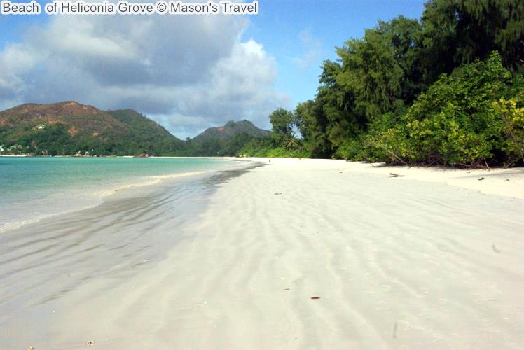 Beach Of Heliconia Grove ©