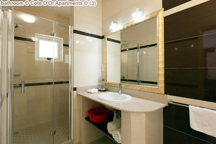 bathroom Cote DOr Apartments