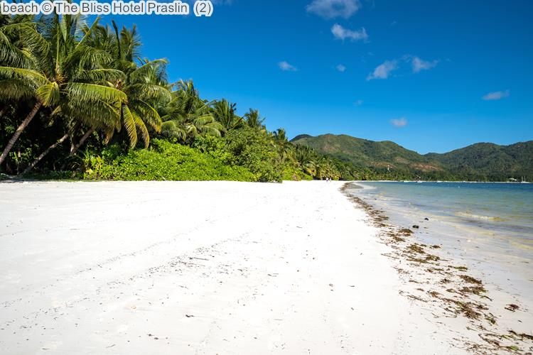 Beach © The Bliss Hotel Praslin
