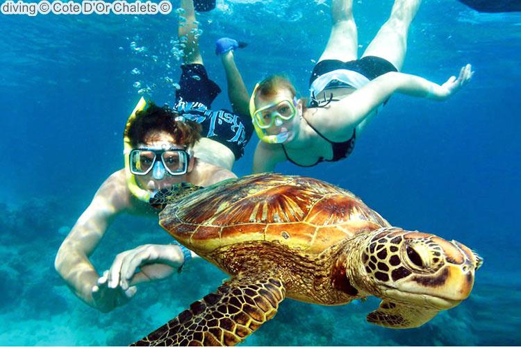 diving Cote DOr Chalets