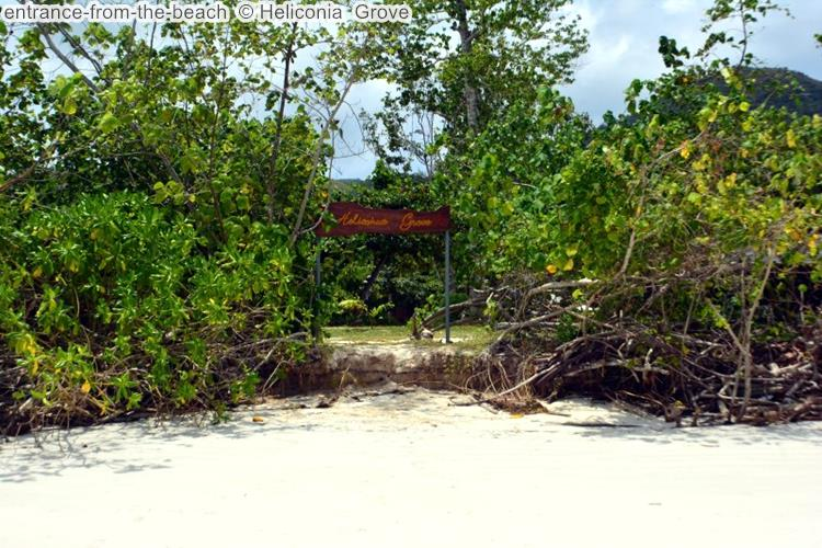 entrance from the beach Heliconia Grove