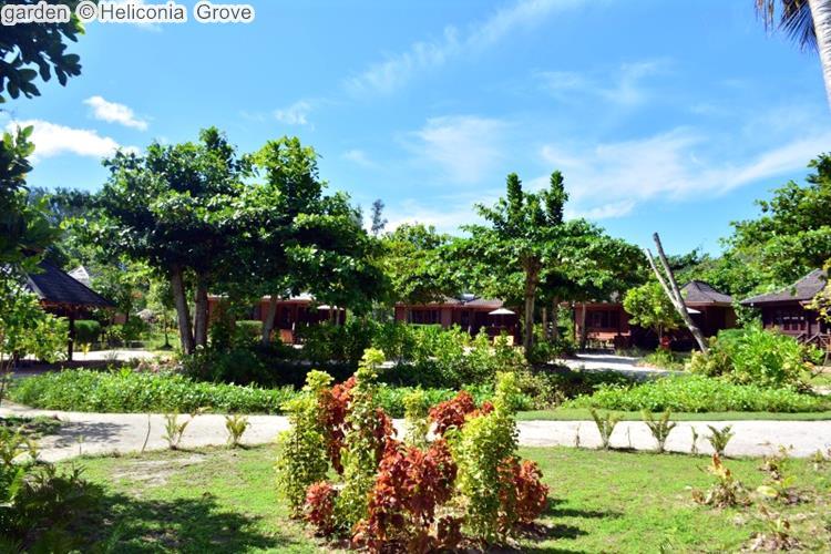 garden Heliconia Grove