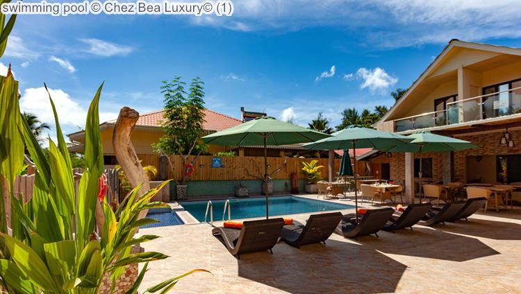 swimming pool Chez Bea Luxury