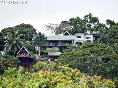 gezicht opMango Lodge