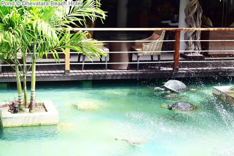 Pond Dhevatara Beach Hotel