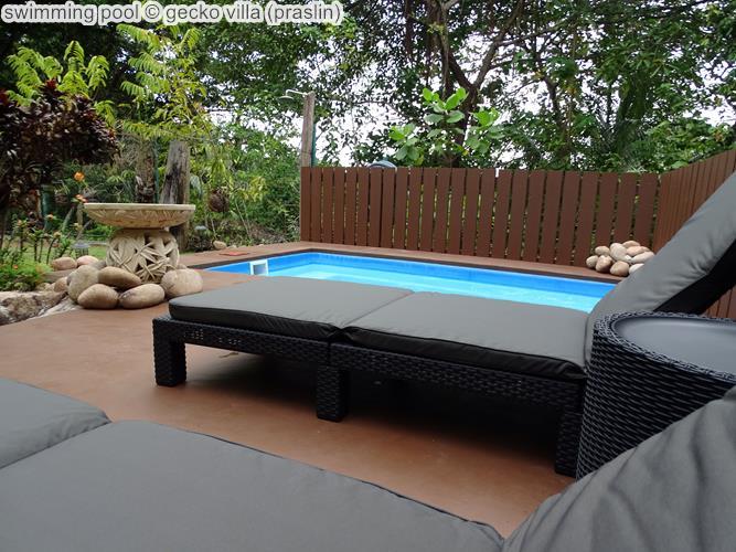 swimming pool gecko villa praslin