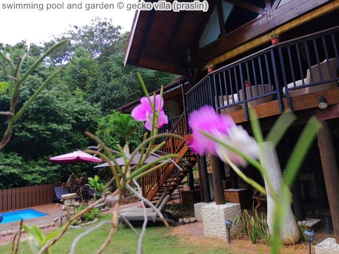 swimming pool and garden gecko villa praslin