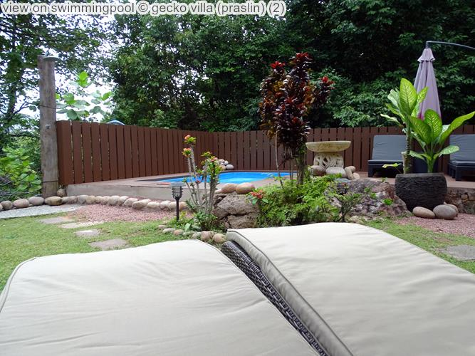 gezicht opswimmingpool gecko villa praslin