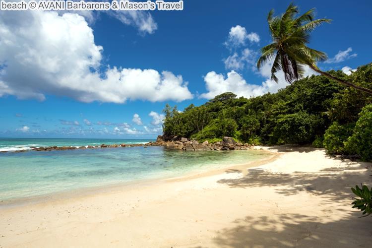Beach © AVANI Barbarons & Mason's Travel