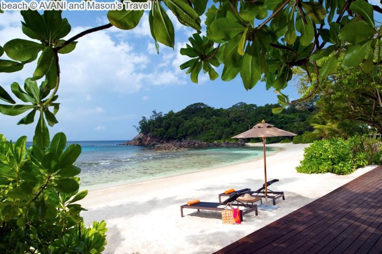 beach AVANI and