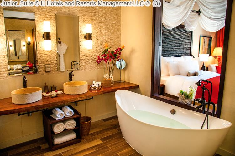Junior Suite H Hotels and Resorts Management LLC