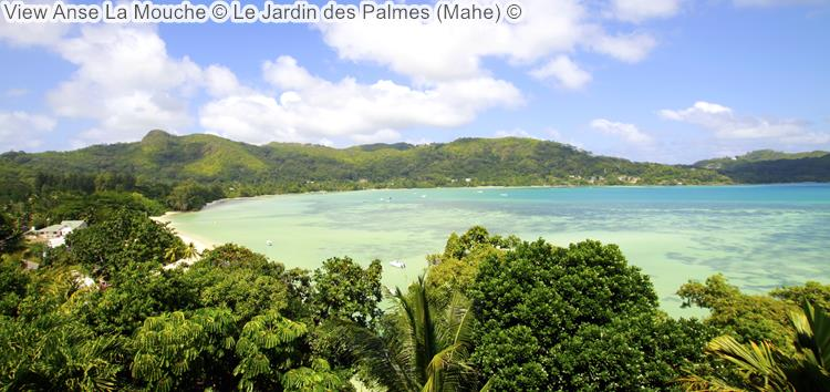 View Anse La Mouche Le Jardin des Palmes Mahe