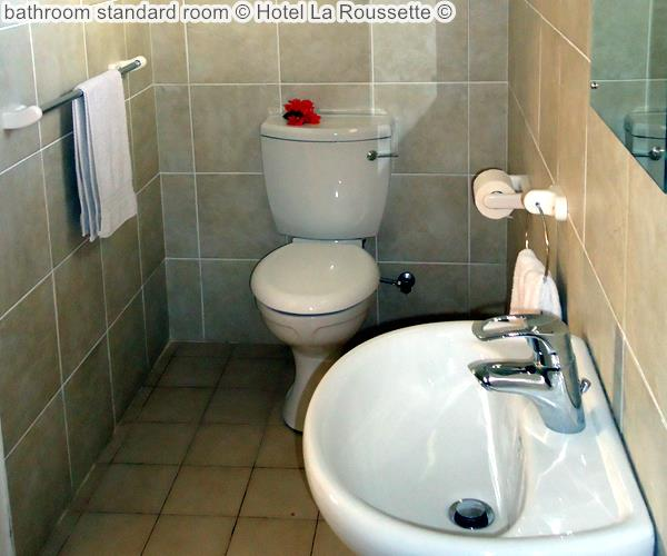 bathroom standard room Hotel La Roussette