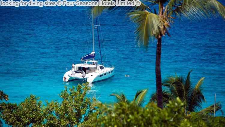 looking for diving sites Four Seasons Hotels Limited