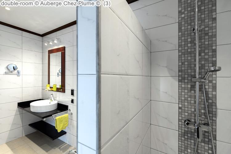 double room Auberge Chez Plume