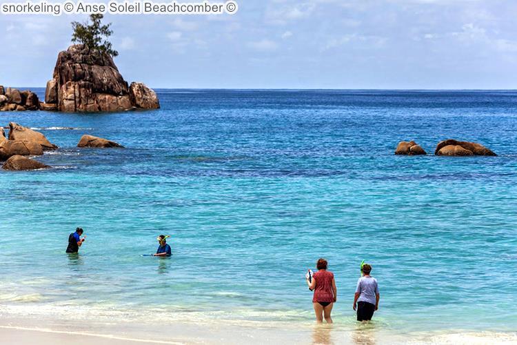 snorkeling Anse Soleil Beachcomber Mahé Seychellen