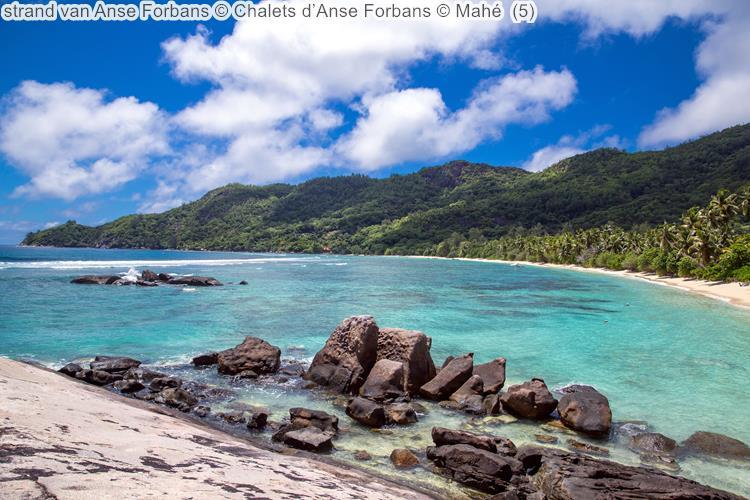 strand van Anse Forbans Chalets d'Anse Forbans Mahé