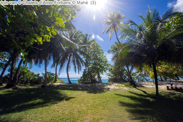 tuin van Chalets d'Anse Forbans Mahé