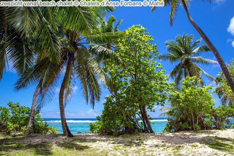 zeezicht vanaf beach chalet Chalets d'Anse Forbans Mahé