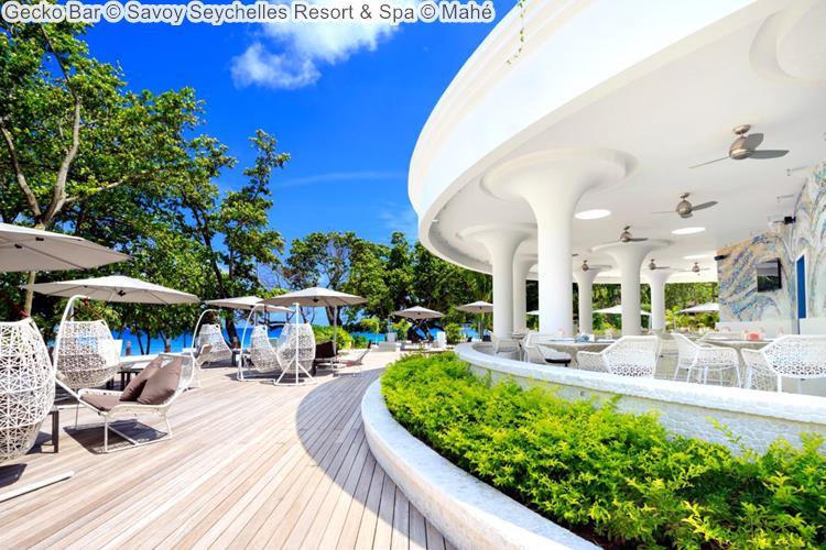 Gecko Bar Savoy Seychelles Resort & Spa Mahé