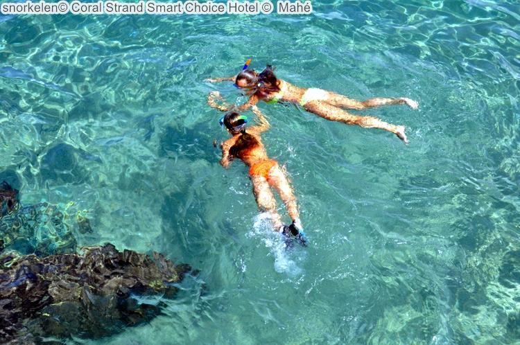 snorkelen Coral Strand Smart Choice Hotel Mahé