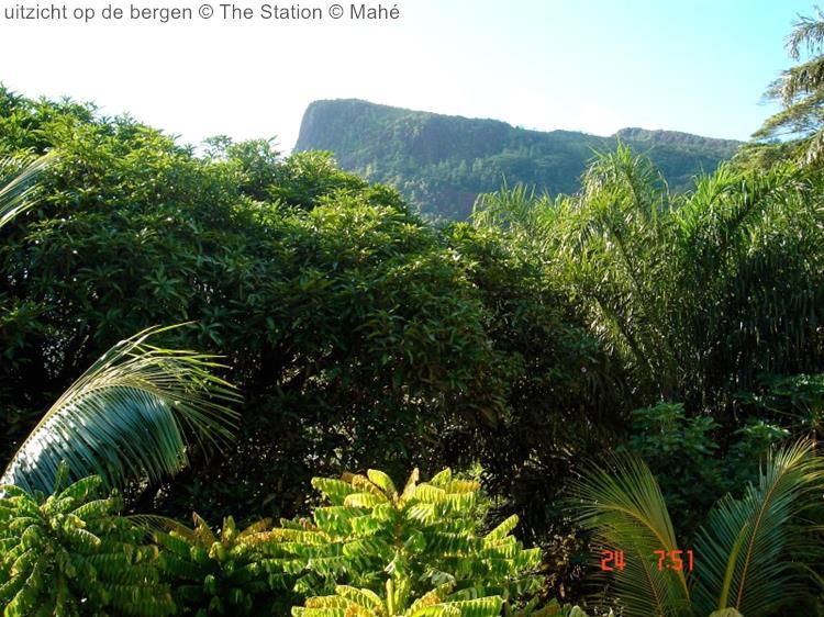 uitzicht op de bergen The Station Mahé