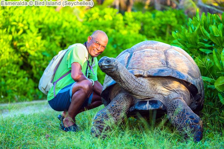Esmeralda Bird Island Seychelles