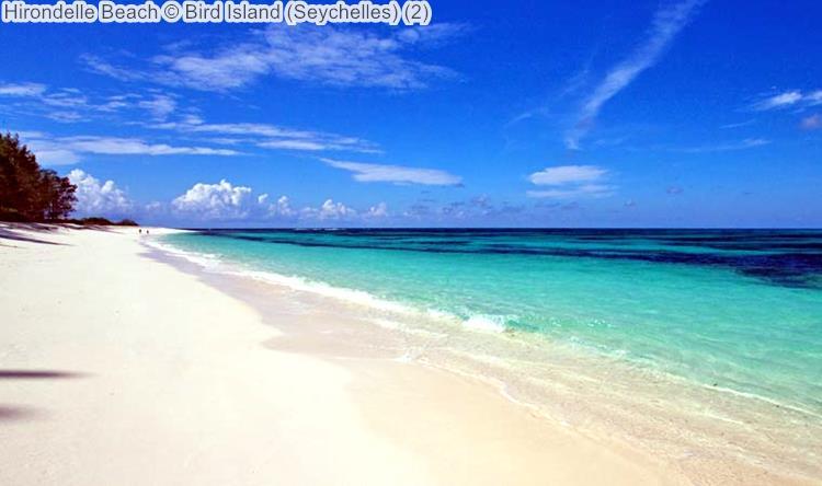 Hirondelle Beach Bird Island Seychelles